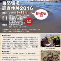 「工業地区の自然環境調査体験2016 海蔵川の河口編」10月15日に延期になりました!