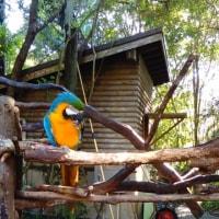 😊野市動物公園😊