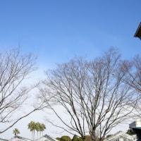 大阪市に少し雪が降りました(3月15日)