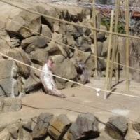 3月三連休最終日の八木山動物公園