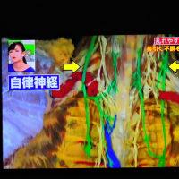 4/26 タケシの 自律神経は目に見える