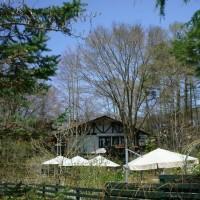 八ヶ岳 キャンプ