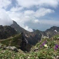 梅雨の合間に横岳へ(八ヶ岳)