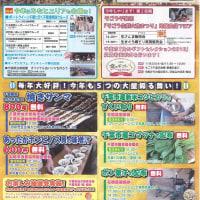 千葉湊大漁まつり 平成28年11月3日!白井興業は、協賛しました。