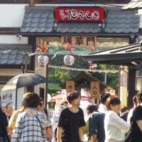 5月21日(日曜日)‥‥‥浅草三社!