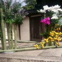 街角にお花~屏風