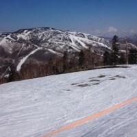 4月28日(金)の志賀高原は…晴天だけど雪は締まり気味!滑る雪だしガラガラだし…シアワセ…