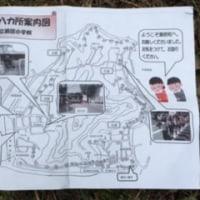 瀬居島大師市