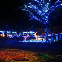 野木町 煉瓦窯冬フェスタ