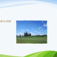 北海道でパークゴルフ