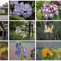 20030524川村美術館