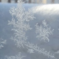 何年かぶりの寒気到来の冬