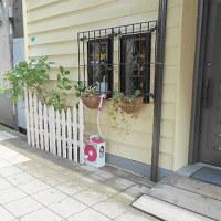 5月25日(木)店舗=正面左側☆