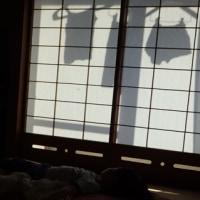 富士川・クラフトパークにて