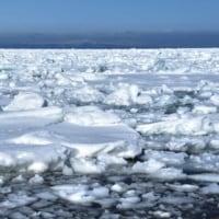 流氷・・接岸