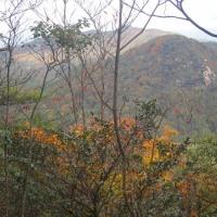 12 帆柱山・中津岡山・奥滝山(530・531・550m:廿日市市)登山  紅葉を楽しみながら