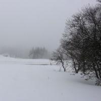 今日の天気 雪 北風