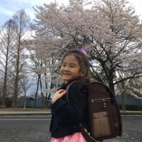5/21 フェスタmy宇都宮出演情報