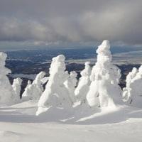 2017年1月18日 北八甲田 田茂萢岳の樹氷