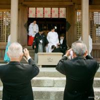 子供の晴れ舞台を撮影する役割は、お父さんですね! @竃門神社で神前結婚式撮影
