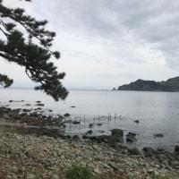 26日 今朝の西伊豆安良里&黄金崎のダイビング情報!