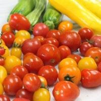 6月<13>トマトサラダ