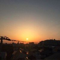 春の透き通る青空と朝日が最高ですね(^o^)(^o^)