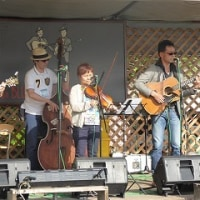Bluegrass��Bass�Ƥ���40th���եե���