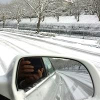 雪が降る お年玉賀状当たりはこない(番号掲載)