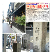 散策 「東京中心部南 239」 有楽町(銀座)界隈