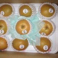 北栄町から赤梨セット届きました。