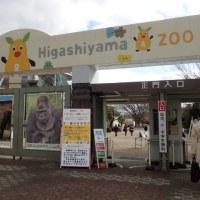 動物園再開
