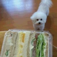 リンデのパン