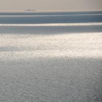 黒岩水仙郷(淡路島)