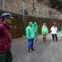 那賀町木沢:植林ボランティア