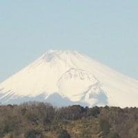 囲碁と修善寺富士