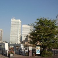 今週は横浜