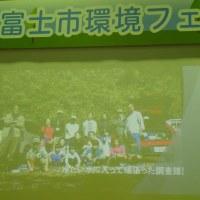 環境フエア:こどもエコクラブ活動報告:ハコネサンショウウオ調査会