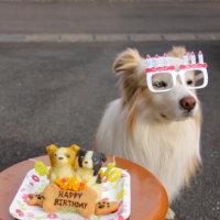 Happy Birthday。
