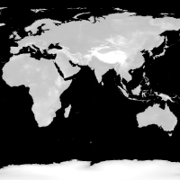 世界はかなり平坦