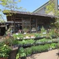 Go Green Marketに出店していた「green gallery GARDENS」へ