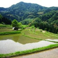 兵庫県・新温泉町の「内山の棚田」