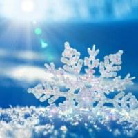 6つの素敵な雪花のアクセサリー