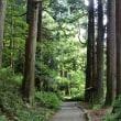 静岡の旅 ⑪