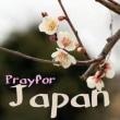 「pray for Japan」 私たちは祈り続けます・・・