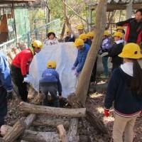 4年生が椎茸植菌作業をしました。