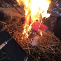 カツオ藁焼き!