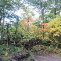 10/19(水)のPACニュース~追分&軽井沢周辺の情報