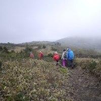 もやに霞む新緑の道後山、でも、山風涼しく最高だった