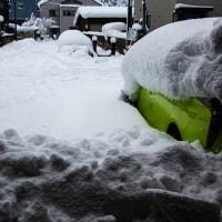 今日はさらに大雪だ